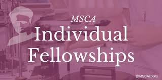 A few more thoughts on writing a MSCA-IF proposal